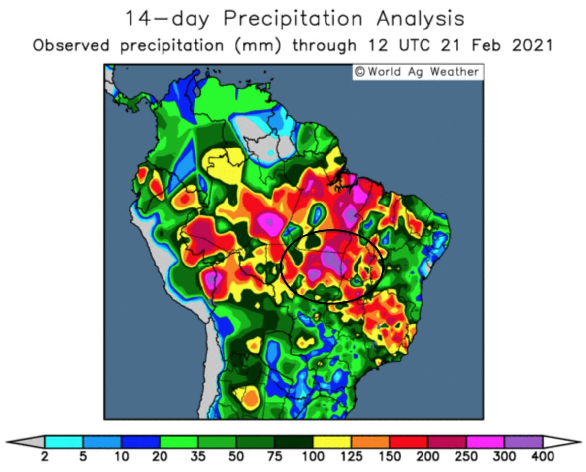 ODA Market Alert:  Rains continue to hamper Brazil's 🇧🇷 soybean harvest and delay corn drilling.