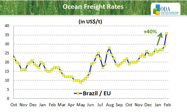 ODA Market Alert: Ocean freight rates are rising strongly.