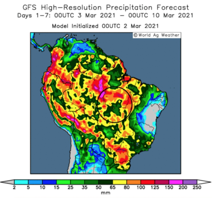 Wet weather is slowing down soya harvest and corn drilling in Brazil