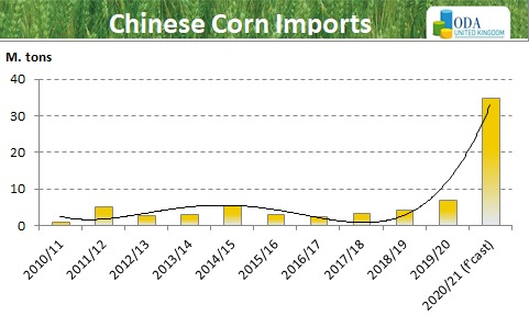 China 🇨🇳 comes back to the market for large volumes of US corn.